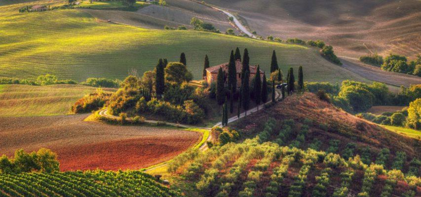 66_Wijngaard-Toscane-Mondi_tn